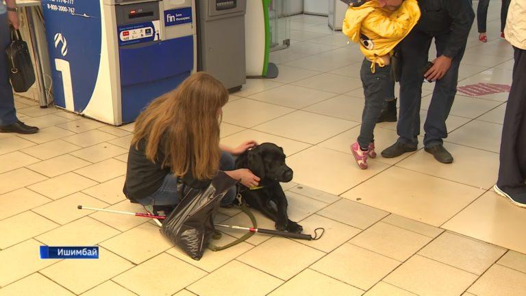Незрячую девушку с собакой-проводником выгнали из общепита