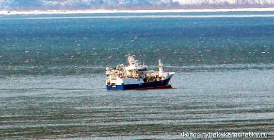 На судне «Командор» ввели карантин из-за коронавируса
