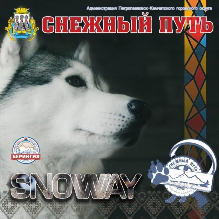 Фестиваль «Снежный путь» пройдет в Петропавловске