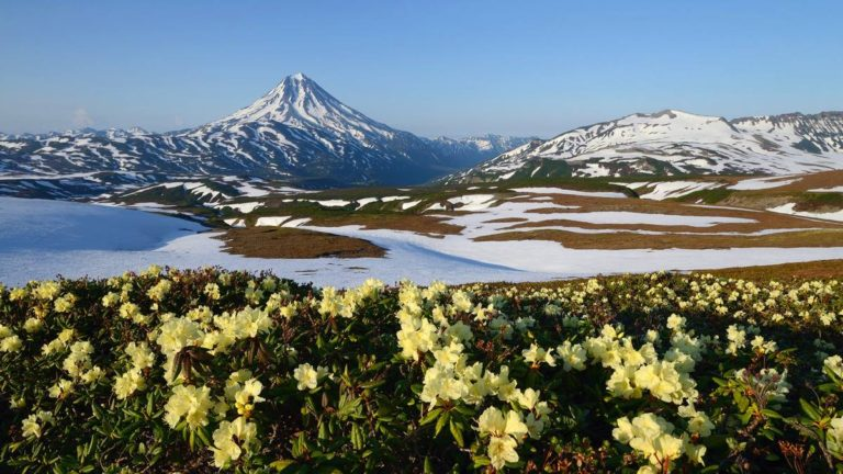 Во второй этап конкурса на должность директора природного парка «Вулканы Камчатки» прошли 65 претендентов