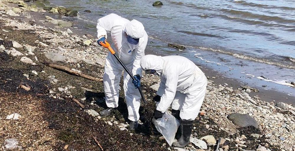 Разлив мазута произошел в бухте Крашенинникова на Камчатке