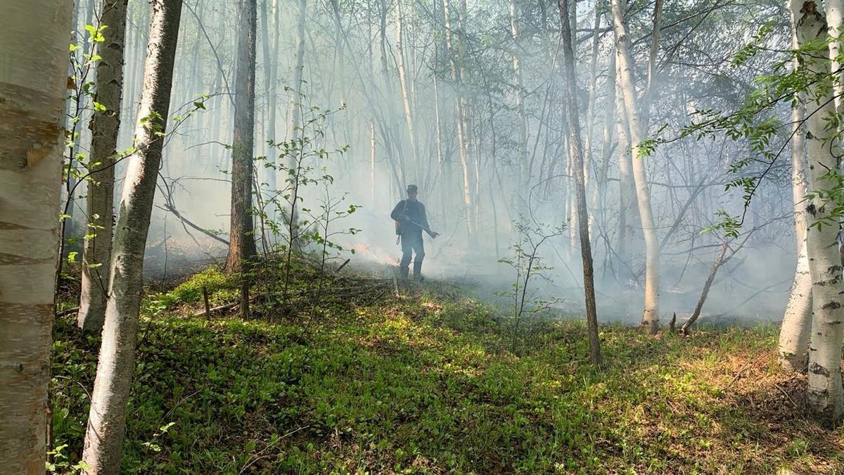 Режим чрезвычайной ситуации на территории Камчатского края отменен