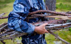 В агентстве лесного хозяйства дали определение валежнику