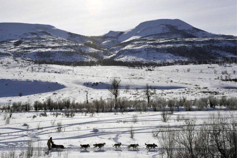 Главу Пенжинского района выберут на Камчатке